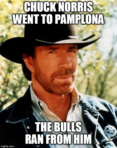 Chuck Norris |  CHUCK NORRIS WENT TO PAMPLONA; THE BULLS RAN FROM HIM | image tagged in memes,chuck norris,spain,bulls | made w/ Imgflip meme maker