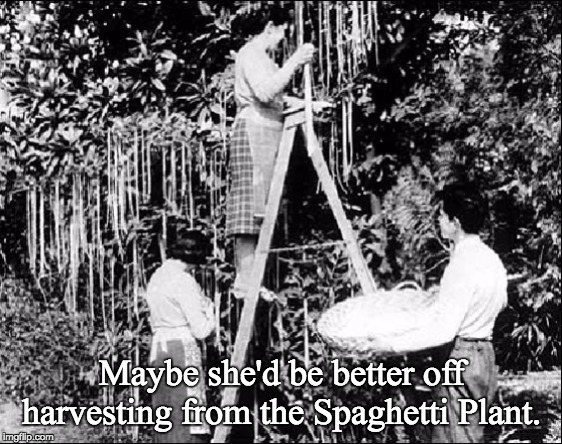 Maybe she'd be better off harvesting from the Spaghetti Plant. | made w/ Imgflip meme maker