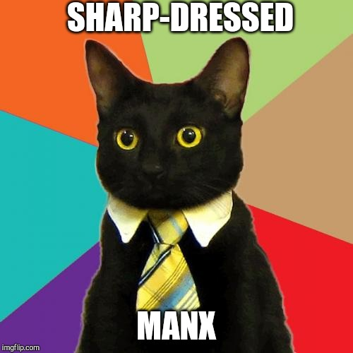 Business Cat | SHARP-DRESSED MANX | image tagged in memes,business cat | made w/ Imgflip meme maker