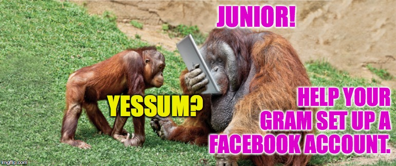 JUNIOR! HELP YOUR GRAM SET UP A FACEBOOK ACCOUNT. YESSUM? | made w/ Imgflip meme maker