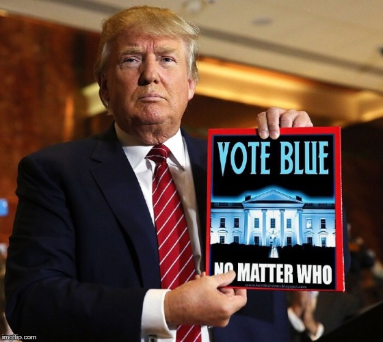 Vote Blue No Matter Who! | image tagged in vote blue no matter who,donald trump,trump for prison 2020 | made w/ Imgflip meme maker