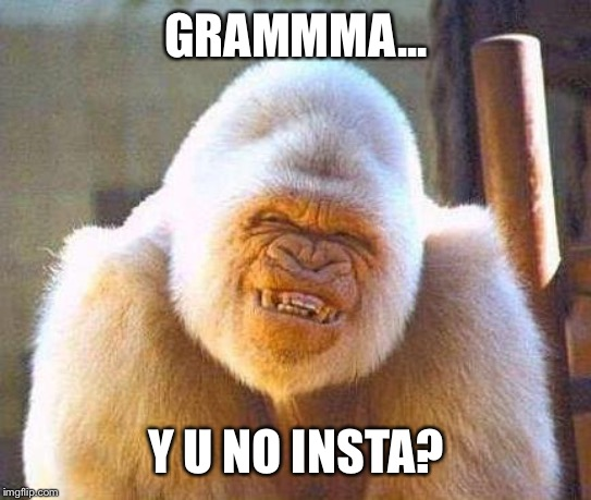 whit gorrila smile | GRAMMMA... Y U NO INSTA? | image tagged in whit gorrila smile | made w/ Imgflip meme maker