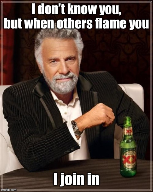 The Most Interesting Man In The World Meme | I don't know you, but when others flame you I join in | image tagged in memes,the most interesting man in the world | made w/ Imgflip meme maker