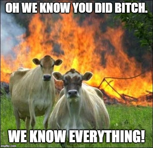 Evil Cows Meme | OH WE KNOW YOU DID B**CH. WE KNOW EVERYTHING! | image tagged in memes,evil cows | made w/ Imgflip meme maker