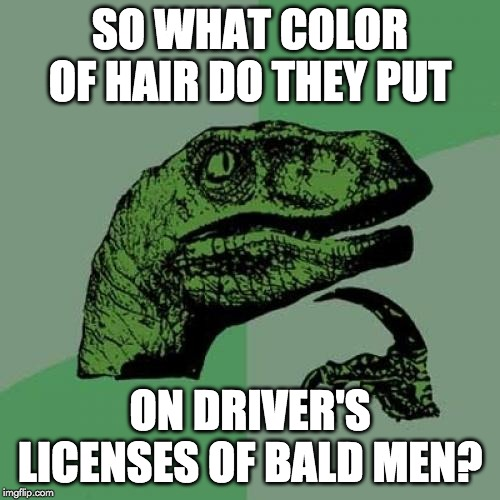 Philosoraptor Meme | SO WHAT COLOR OF HAIR DO THEY PUT ON DRIVER'S LICENSES OF BALD MEN? | image tagged in memes,philosoraptor | made w/ Imgflip meme maker