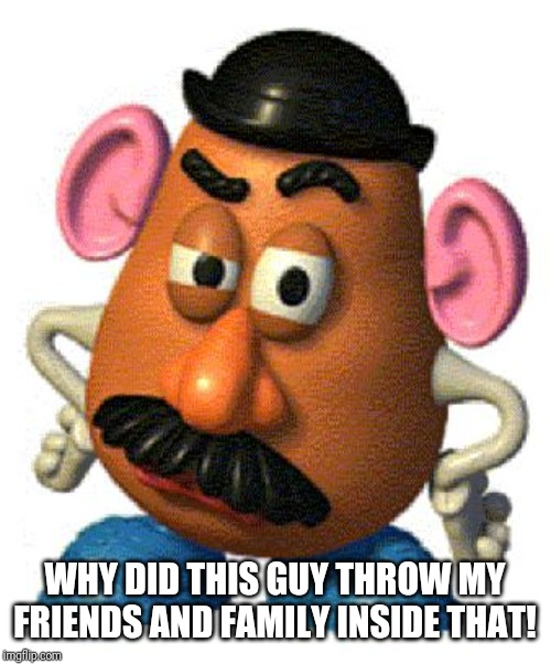 Mr Potato Head | WHY DID THIS GUY THROW MY FRIENDS AND FAMILY INSIDE THAT! | image tagged in mr potato head | made w/ Imgflip meme maker