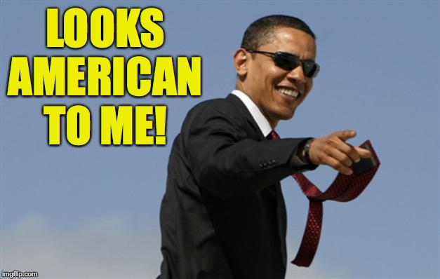 Cool Obama Meme | LOOKS AMERICAN TO ME! | image tagged in memes,cool obama | made w/ Imgflip meme maker