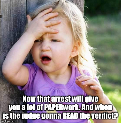 duh | Now that arrest will give you a lot of PAPERwork. And when is the judge gonna READ the verdict? | image tagged in duh | made w/ Imgflip meme maker