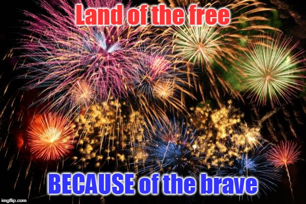 Thank you veterans for your selfless service to this wonderful country. I am forever grateful to you. | Land of the free BECAUSE of the brave | image tagged in july 4th | made w/ Imgflip meme maker