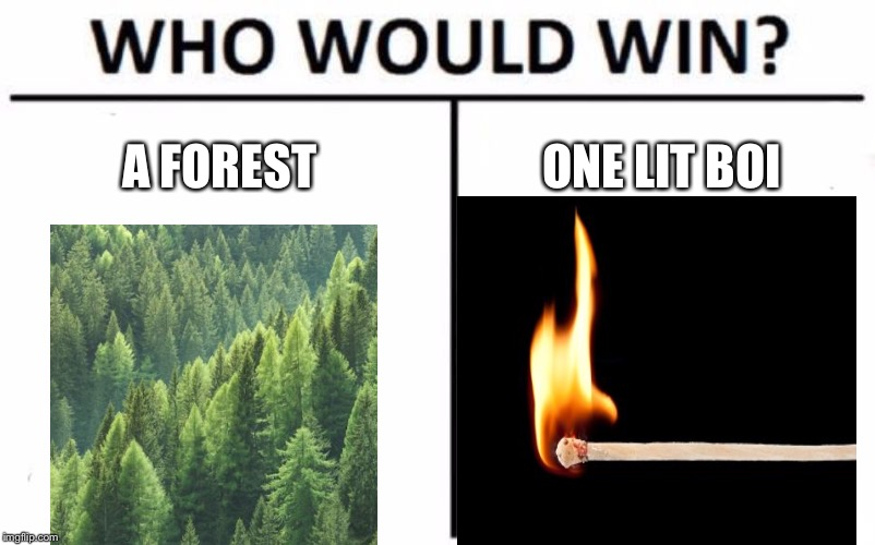Who Would Win? | A FOREST ONE LIT BOI | image tagged in memes,who would win,wildfire,match,camp fire | made w/ Imgflip meme maker