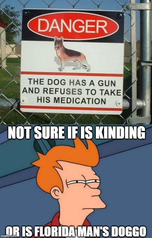 Danger Dog | NOT SURE IF IS KINDING OR IS FLORIDA MAN'S DOGGO | image tagged in memes,futurama fry,danger,florida man,doggo,meanwhile in florida | made w/ Imgflip meme maker
