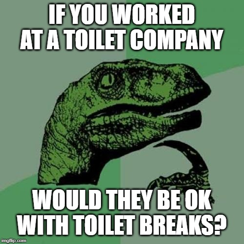 Philosoraptor Meme | IF YOU WORKED AT A TOILET COMPANY WOULD THEY BE OK WITH TOILET BREAKS? | image tagged in memes,philosoraptor | made w/ Imgflip meme maker