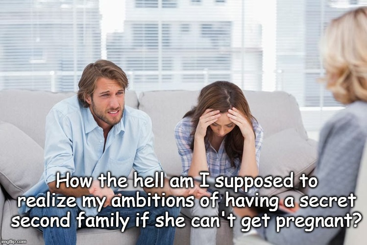 Life Ambitions | How the hell am I supposed to realize my ambitions of having a secret second family if she can't get pregnant? | image tagged in couples therapy | made w/ Imgflip meme maker