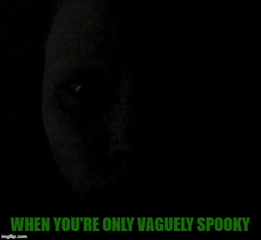 Fun fact. That's my actual face. Needs 50% more spook. | WHEN YOU'RE ONLY VAGUELY SPOOKY | image tagged in nixieknox,memes,spooky | made w/ Imgflip meme maker