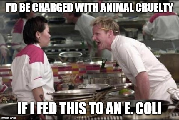 Angry Chef Gordon Ramsay Meme | I'D BE CHARGED WITH ANIMAL CRUELTY IF I FED THIS TO AN E. COLI | image tagged in memes,angry chef gordon ramsay,funny | made w/ Imgflip meme maker