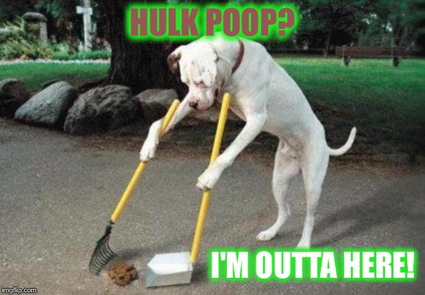 Dog poop | HULK POOP? I'M OUTTA HERE! | image tagged in dog poop | made w/ Imgflip meme maker