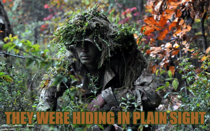 camouflage | THEY WERE HIDING IN PLAIN SIGHT | image tagged in camouflage | made w/ Imgflip meme maker