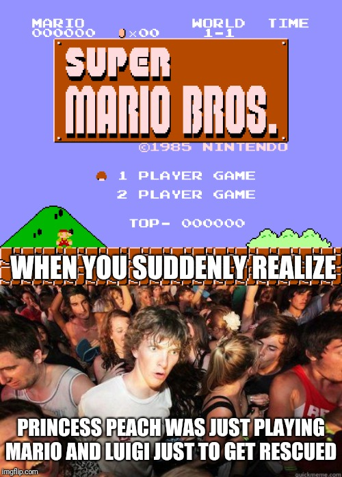 The real player. | WHEN YOU SUDDENLY REALIZE PRINCESS PEACH WAS JUST PLAYING MARIO AND LUIGI JUST TO GET RESCUED | image tagged in sudden realization,mario and luigi,princess peach,mario bros,funny memes,facts | made w/ Imgflip meme maker