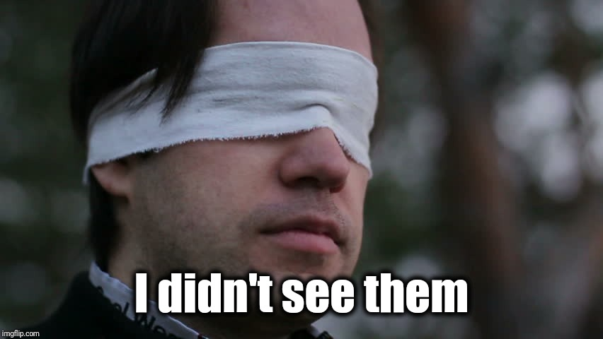 Blindfolded man | I didn't see them | image tagged in blindfolded man | made w/ Imgflip meme maker