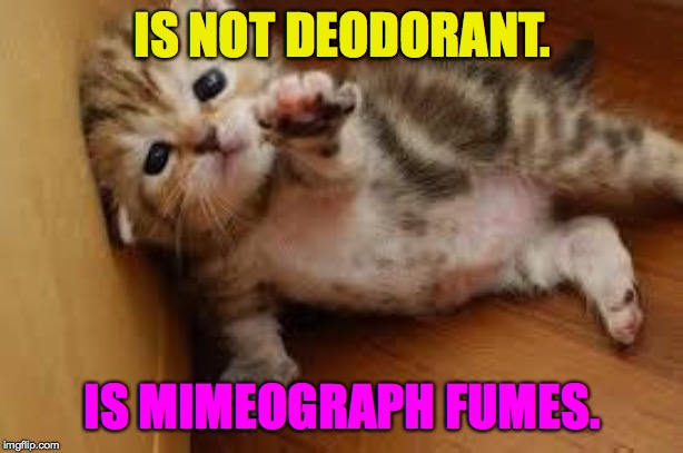 Sad Kitten Goodbye | IS NOT DEODORANT. IS MIMEOGRAPH FUMES. | image tagged in sad kitten goodbye | made w/ Imgflip meme maker