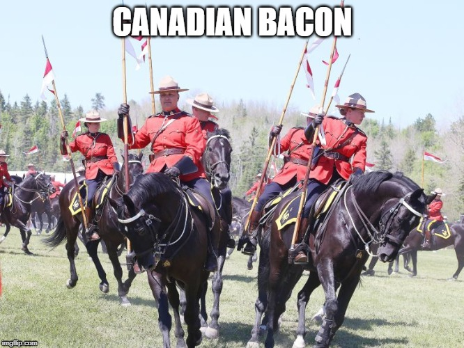 Canadian Bacon | CANADIAN BACON | image tagged in canadian,bacon,ham,cops,pigs | made w/ Imgflip meme maker