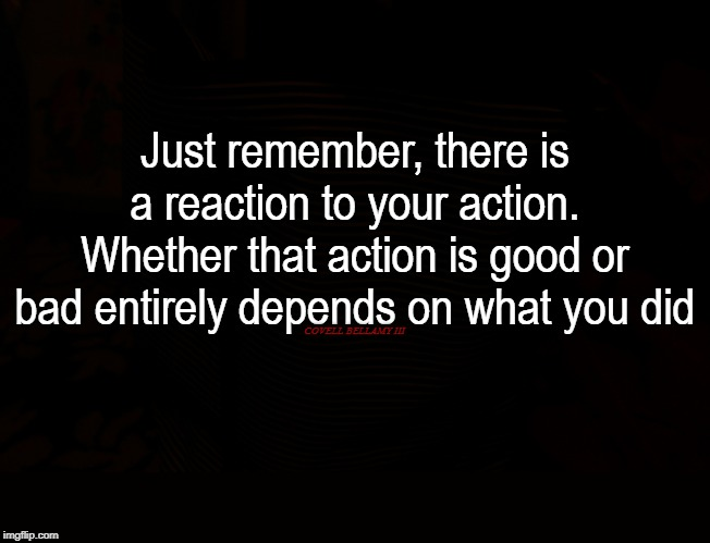 Reaction To Your Action | Just remember, there is a reaction to your action. Whether that action is good or bad entirely depends on what you did COVELL BELLAMY III | image tagged in reaction to your action | made w/ Imgflip meme maker