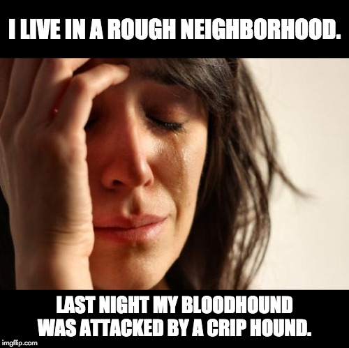 First World Problems Meme | I LIVE IN A ROUGH NEIGHBORHOOD. LAST NIGHT MY BLOODHOUND WAS ATTACKED BY A CRIP HOUND. | image tagged in memes,first world problems | made w/ Imgflip meme maker