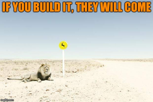 Lion around | IF YOU BUILD IT, THEY WILL COME | image tagged in funny lion,if you build it they will come | made w/ Imgflip meme maker