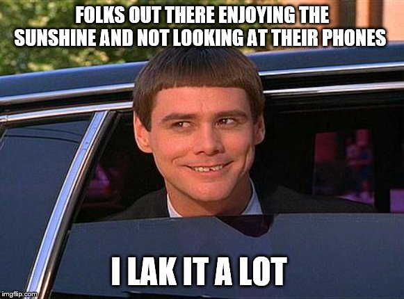 another shrimp on the barbie |  FOLKS OUT THERE ENJOYING THE SUNSHINE AND NOT LOOKING AT THEIR PHONES; I LAK IT A LOT | image tagged in jim carrey meme,i like it a lot | made w/ Imgflip meme maker