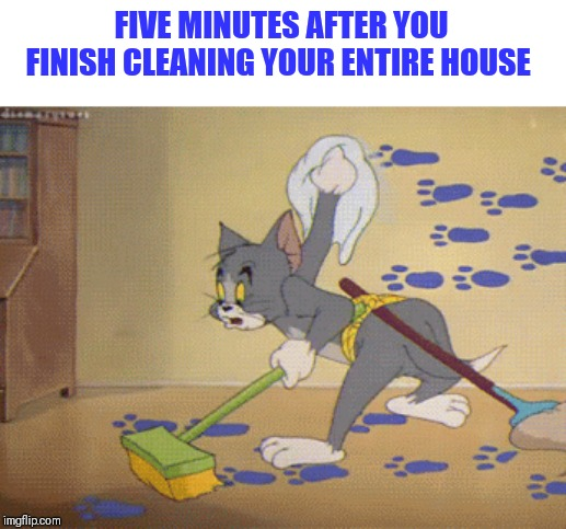 This is why I'm determined to live alone for the rest of my life |  FIVE MINUTES AFTER YOU FINISH CLEANING YOUR ENTIRE HOUSE | image tagged in tom,house keeping,y u no respect clean house | made w/ Imgflip meme maker