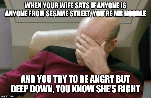 When she's right, she's right | WHEN YOUR WIFE SAYS IF ANYONE IS ANYONE FROM SESAME STREET, YOU'RE MR NOODLE AND YOU TRY TO BE ANGRY BUT DEEP DOWN, YOU KNOW SHE'S RIGHT | image tagged in memes,captain picard facepalm,wife,sesame street,special kind of stupid,crazy | made w/ Imgflip meme maker