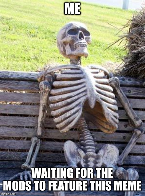 Imgflip sucks | ME WAITING FOR THE MODS TO FEATURE THIS MEME | image tagged in memes,waiting skeleton,imgflip mods | made w/ Imgflip meme maker