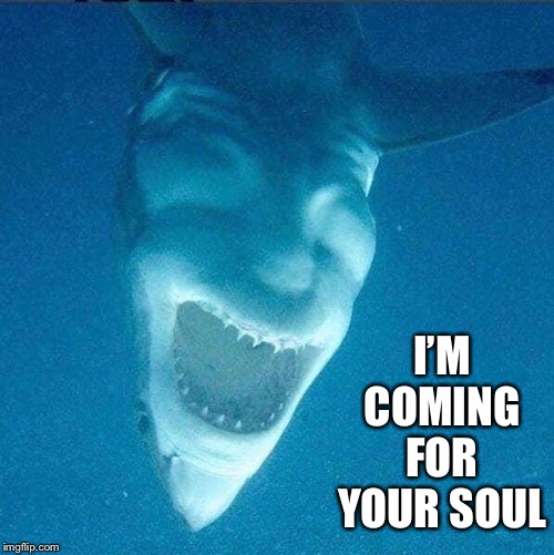 I'M COMING FOR YOUR SOUL | image tagged in shark,demon | made w/ Imgflip meme maker