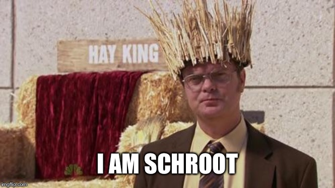 I am Schroot |  I AM SCHROOT | image tagged in i am groot,the office,dwight schrute | made w/ Imgflip meme maker