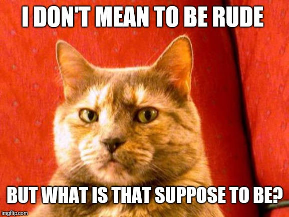 Suspicious Cat Meme | I DON'T MEAN TO BE RUDE BUT WHAT IS THAT SUPPOSE TO BE? | image tagged in memes,suspicious cat | made w/ Imgflip meme maker