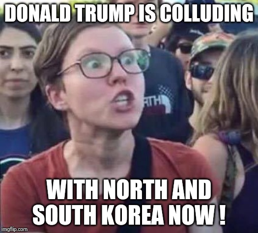 Yes they are starting with this stupid sh*t |  DONALD TRUMP IS COLLUDING; WITH NORTH AND SOUTH KOREA NOW ! | image tagged in triggered liberal,dumb and dumber,election,unacceptable,we have a hulk | made w/ Imgflip meme maker