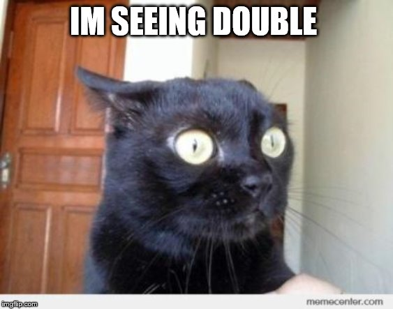 Scared Cat | IM SEEING DOUBLE | image tagged in scared cat | made w/ Imgflip meme maker