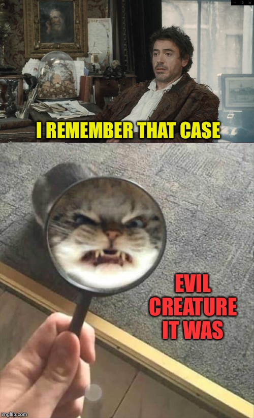 Sherlock's nemesis. | I REMEMBER THAT CASE EVIL CREATURE IT WAS | image tagged in sherlock holmes,cats,memes,funny | made w/ Imgflip meme maker