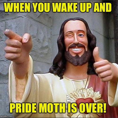 Buddy Christ |  WHEN YOU WAKE UP AND; PRIDE MOTH IS OVER! | image tagged in memes,buddy christ | made w/ Imgflip meme maker