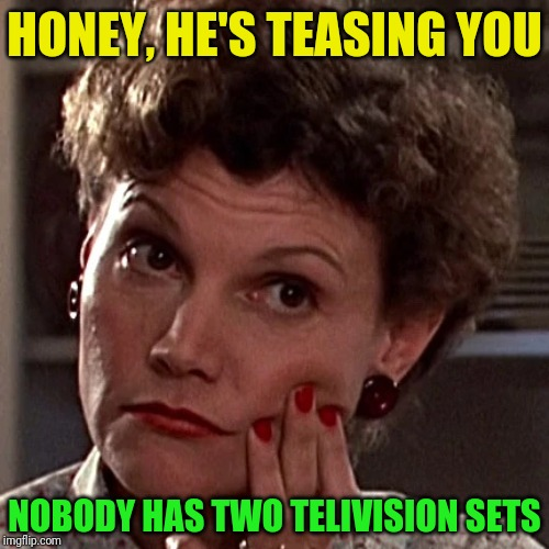HONEY, HE'S TEASING YOU NOBODY HAS TWO TELIVISION SETS | made w/ Imgflip meme maker