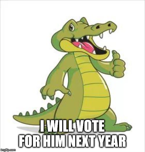 thumbs | I WILL VOTE FOR HIM NEXT YEAR | image tagged in thumbs | made w/ Imgflip meme maker