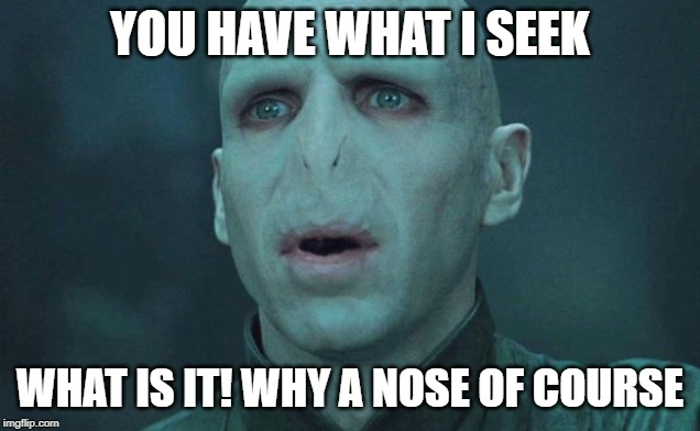 Voldemort |  YOU HAVE WHAT I SEEK; WHAT IS IT! WHY A NOSE OF COURSE | image tagged in voldemort | made w/ Imgflip meme maker