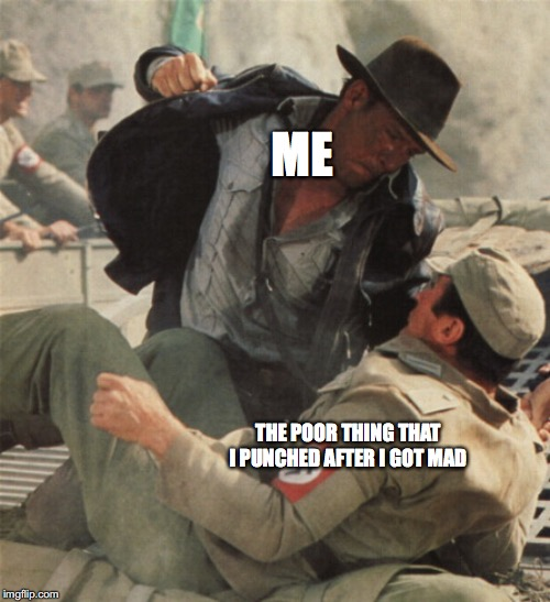 Indiana Jones Punching Nazis | ME THE POOR THING THAT I PUNCHED AFTER I GOT MAD | image tagged in indiana jones punching nazis | made w/ Imgflip meme maker