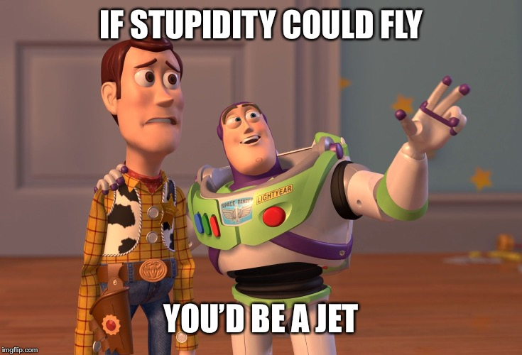 X, X Everywhere Meme | IF STUPIDITY COULD FLY YOU'D BE A JET | image tagged in memes,x x everywhere | made w/ Imgflip meme maker