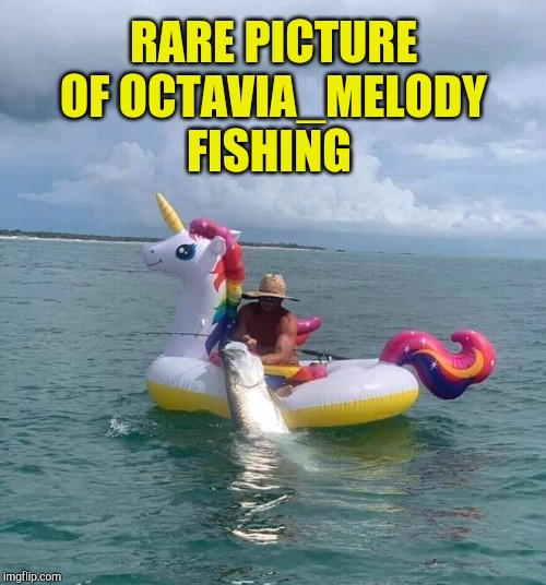 Impressive catch! lol :-) |  RARE PICTURE OF OCTAVIA_MELODY FISHING | image tagged in octavia_melody,mlp,my little pony,jbmemegeek,fishing | made w/ Imgflip meme maker