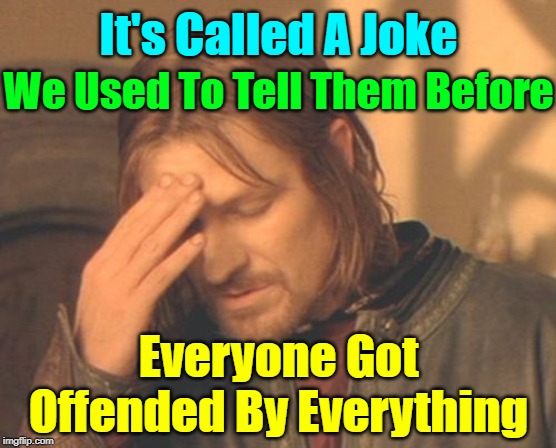 If Some People Could Just Lighten Up A Bit That Would Be Great! | It's Called A Joke We Used To Tell Them Before Everyone Got Offended By Everything | image tagged in memes,frustrated boromir,its a joke | made w/ Imgflip meme maker