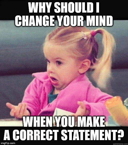 I dont know girl | WHY SHOULD I CHANGE YOUR MIND WHEN YOU MAKE A CORRECT STATEMENT? | image tagged in i dont know girl | made w/ Imgflip meme maker