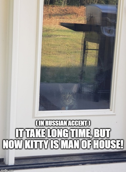 russian kitty | ( IN RUSSIAN ACCENT ) IT TAKE LONG TIME, BUT NOW KITTY IS MAN OF HOUSE! | image tagged in cats,cat,russian,funny cat memes | made w/ Imgflip meme maker