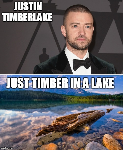 Get it right | JUSTIN TIMBERLAKE JUST TIMBER IN A LAKE | image tagged in justin timberlake,just timber in a lake | made w/ Imgflip meme maker