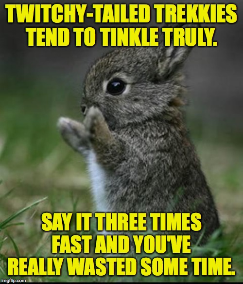 Use this test to ascertain whether you have a meme addiction.  That's right.  I said 'ascertain'  ( : | TWITCHY-TAILED TREKKIES TEND TO TINKLE TRULY. SAY IT THREE TIMES FAST AND YOU'VE REALLY WASTED SOME TIME. | image tagged in cute bunny,memes,tongue twisters,trekkies | made w/ Imgflip meme maker